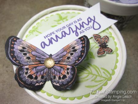 Butterfly sweet cups - lid 1