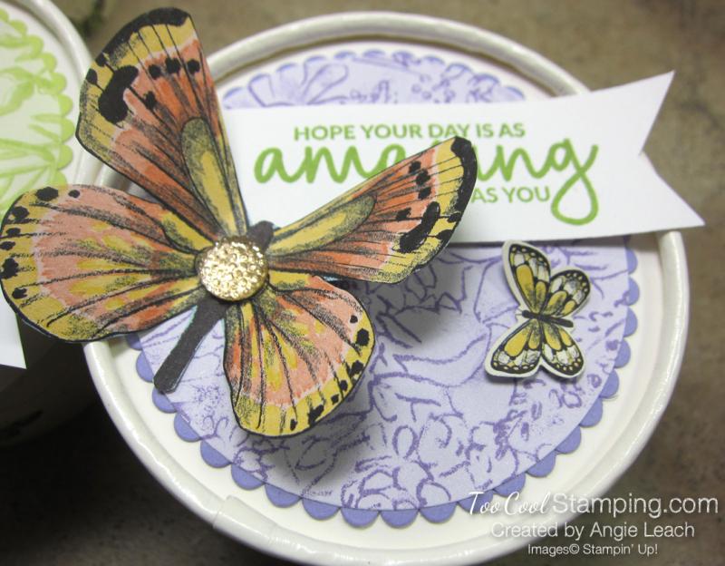 Butterfly sweet cups - lid 8