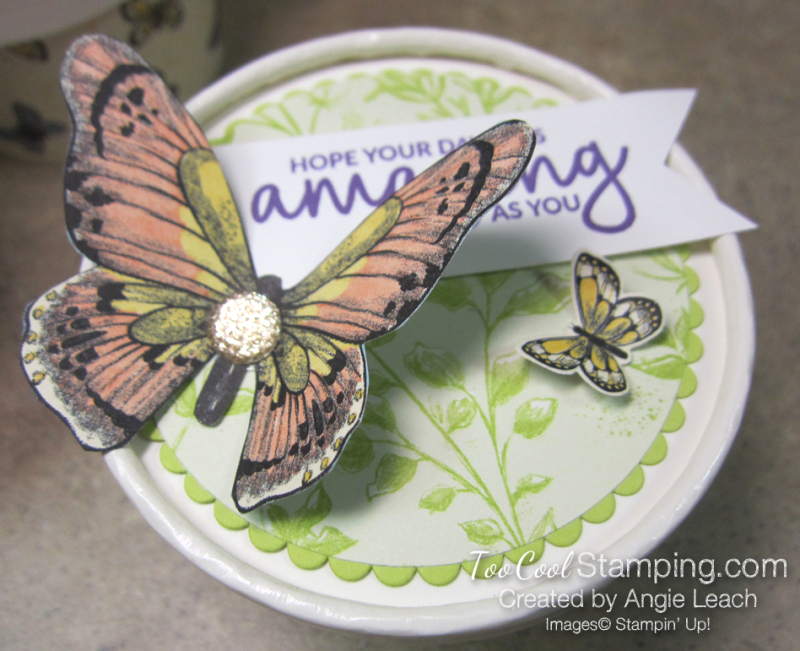 Butterfly sweet cups - lid 10