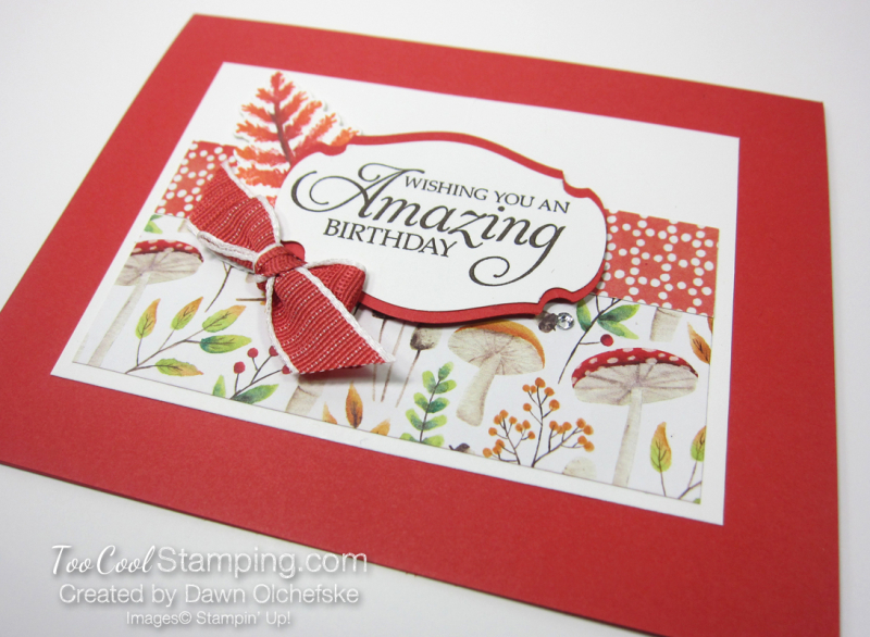 Swap - painted seasons amazing birthday bow - dawn olchefske 2