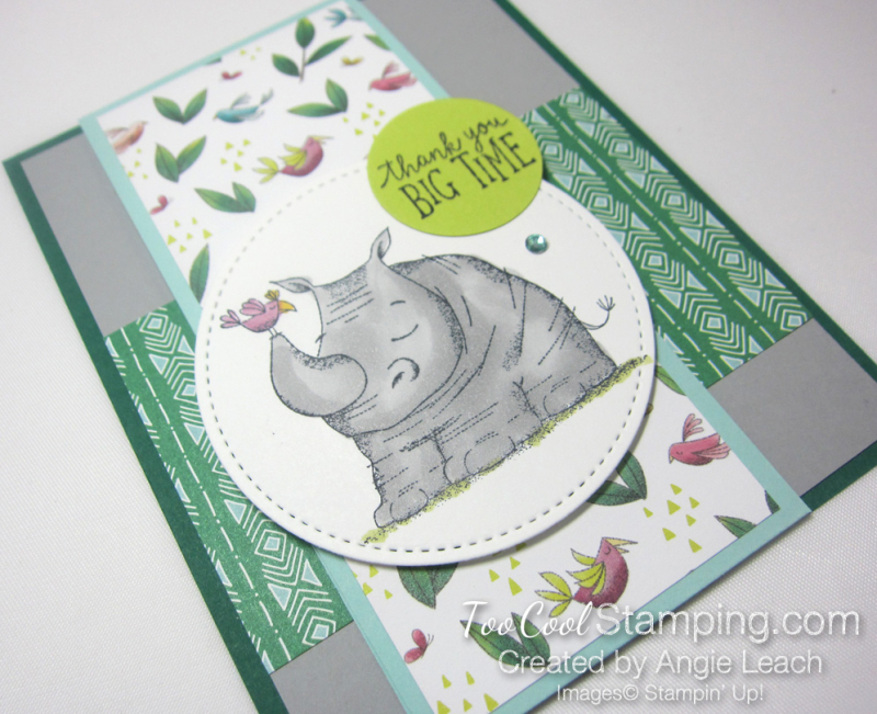Animal outing rhino wild about you 2