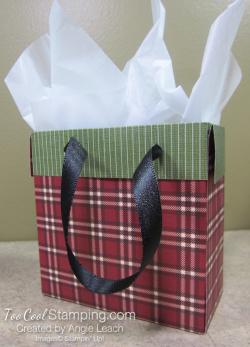 Dsp mini gift bags - plaid red 2