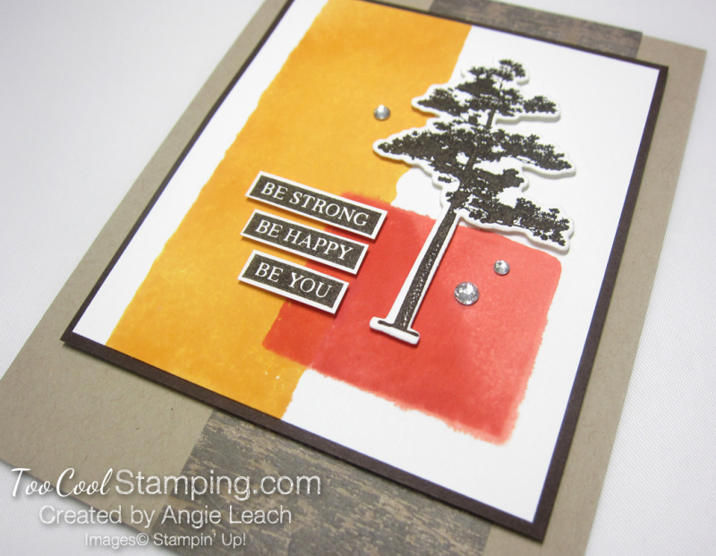 Rooted In Nature Color Block - warm 2