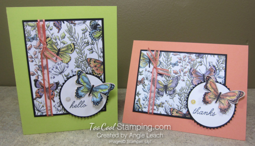 Botanical butterfly wildflowers - two cool