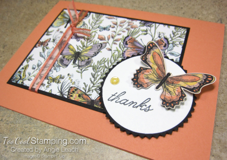 Botanical butterfly wildflowers - thanks grapefruit 2