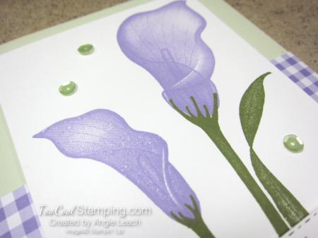 Lasting lily gingham - sea foam 4