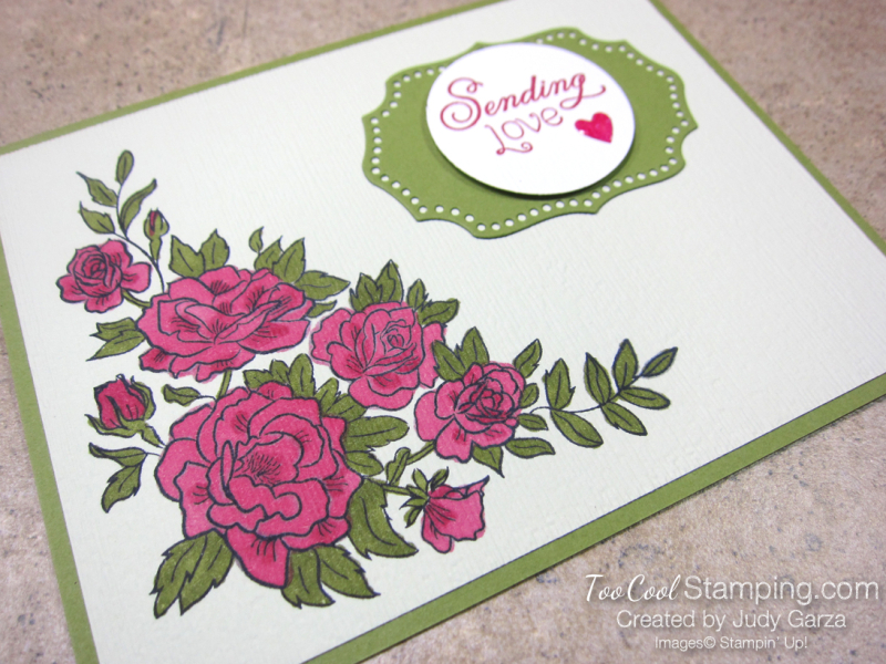 Climbing Roses 2 - Judy Garza