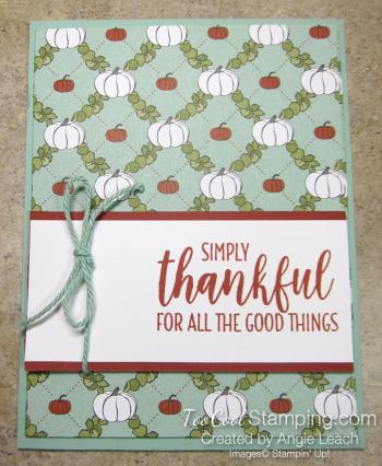Country lane diagonal pocket card - mint thankful