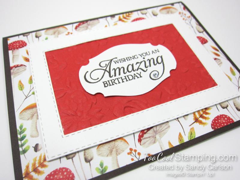 Swap - painted seasons amazing birthday frame - sandy carlson 2