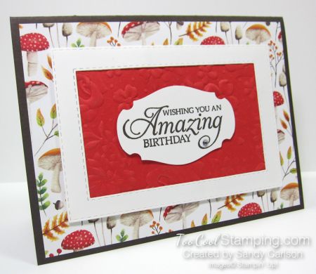 Swap - painted seasons amazing birthday frame - sandy carlson 1