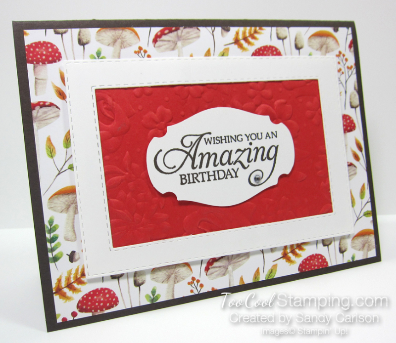 Swap - painted seasons amazing birthday frame - sandy carlson 1