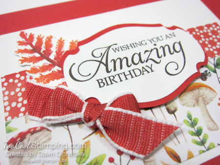 Swap - painted seasons amazing birthday bow - dawn olchefske 3