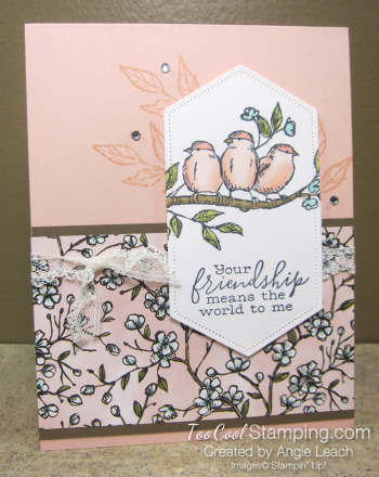 Bird ballad friendship sneak peek cards - petal pink