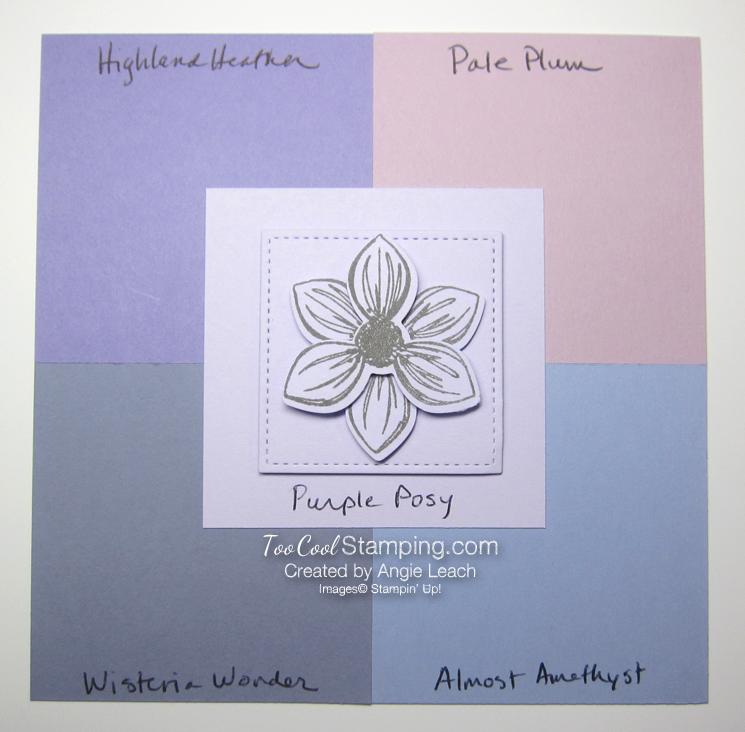 Purple Posy comparisons