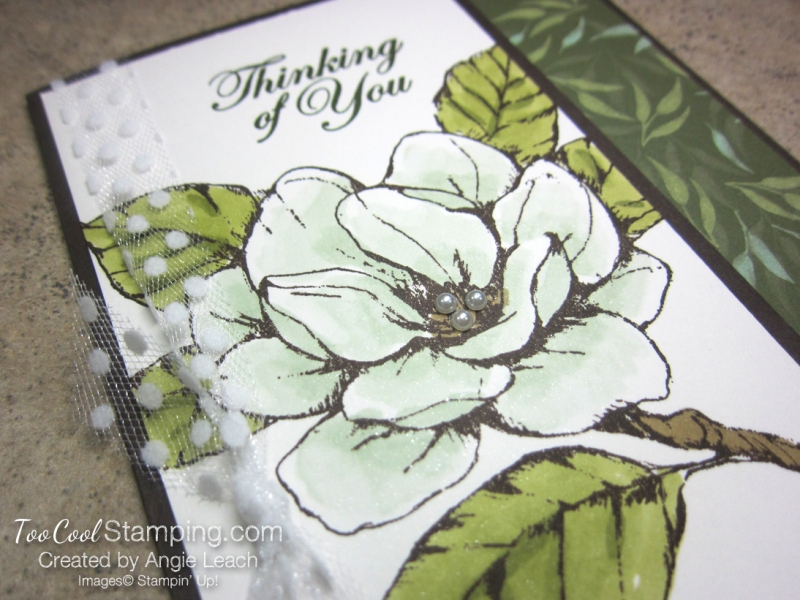 Magnolia Shimmer Blends - mint 2
