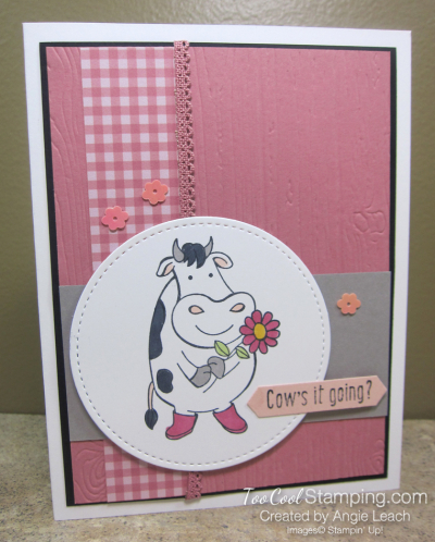 Over The Moon Cows it going - rose 1