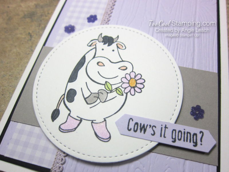 Over The Moon Cows it going - posy 2