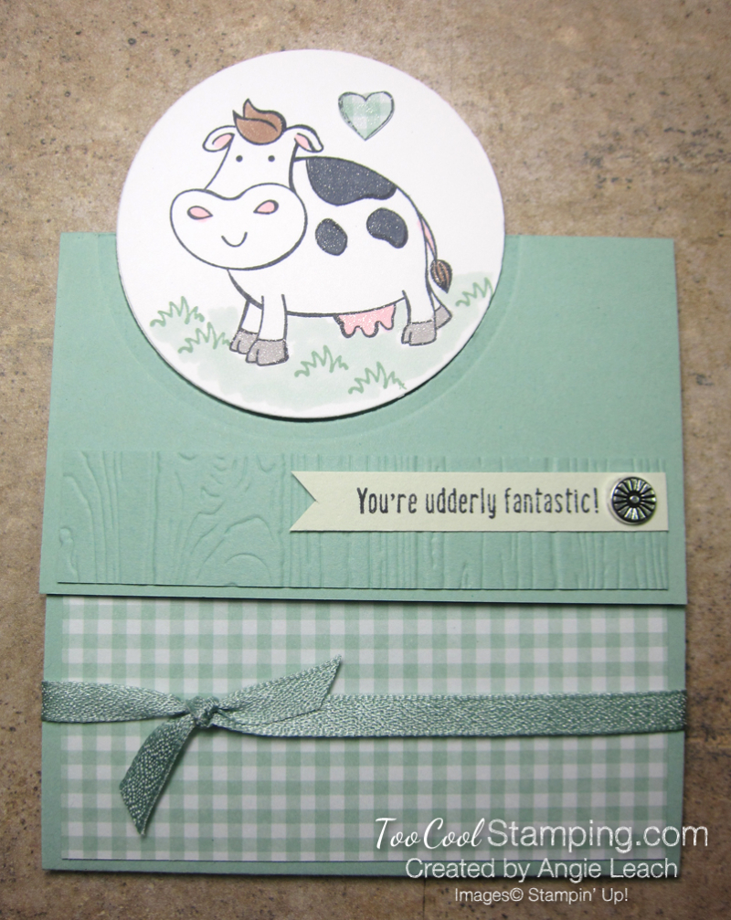 Over The Moon Extended Trifold - mint 1