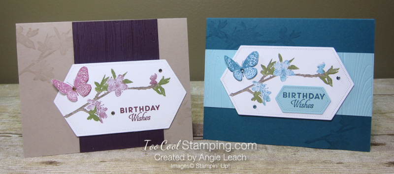 Butterfly wishes with markers - two cool