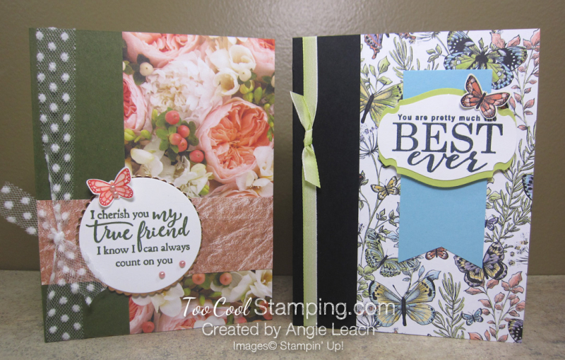 Sweet Designer Series Paper Cards - two cool