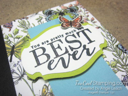 Sweet Designer Series Paper Cards - botanical butterflies 2