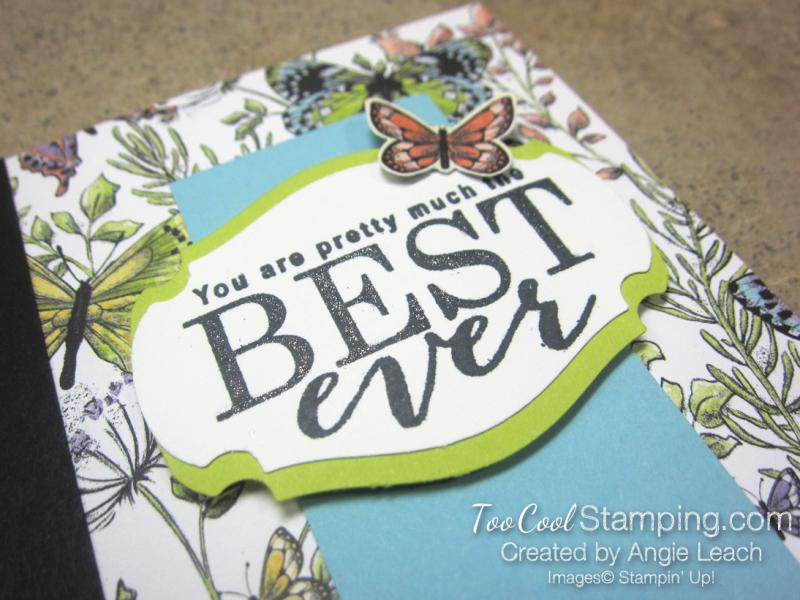 Sweet Designer Series Paper Cards - botanical butterflies 2