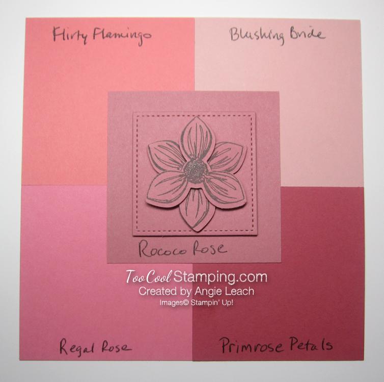 Rococo Rose comparisons