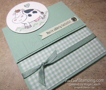 Over The Moon Extended Trifold - mint 2