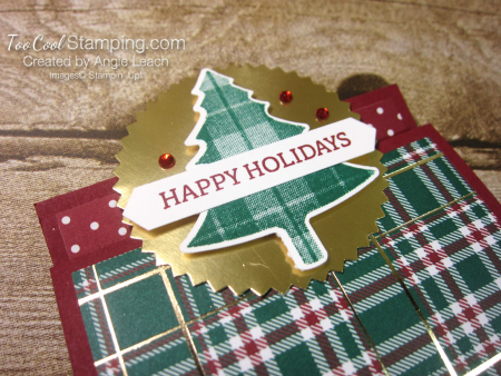 Perfectly Plaid matchbook treats - cherry 2