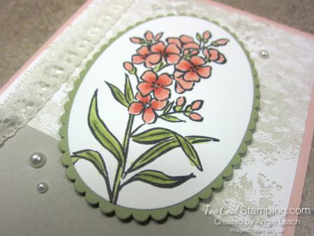 Southern serenade vintage birthday - petal pink 3