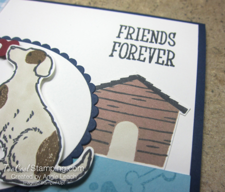 Gingham gala happy tails - friends forever 4