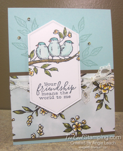 Bird ballad friendship sneak peek cards - pool party