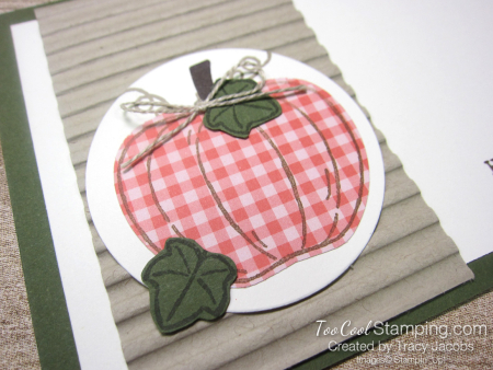 Harvest Hellos gingham pumpkin - tracy jacobs 2