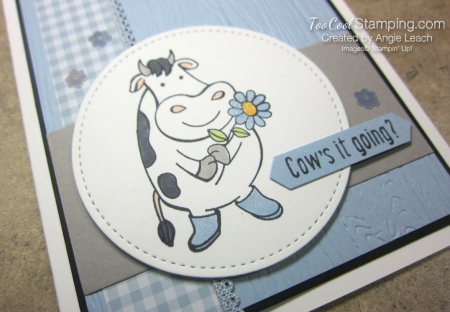 Over The Moon Cows it going - seaside 2