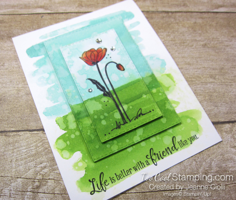 Painted poppies watercolor - ciolli 2