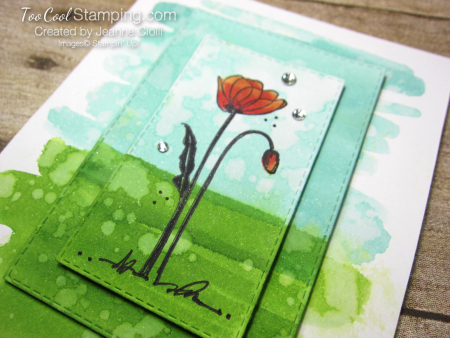 Painted poppies watercolor - ciolli 3