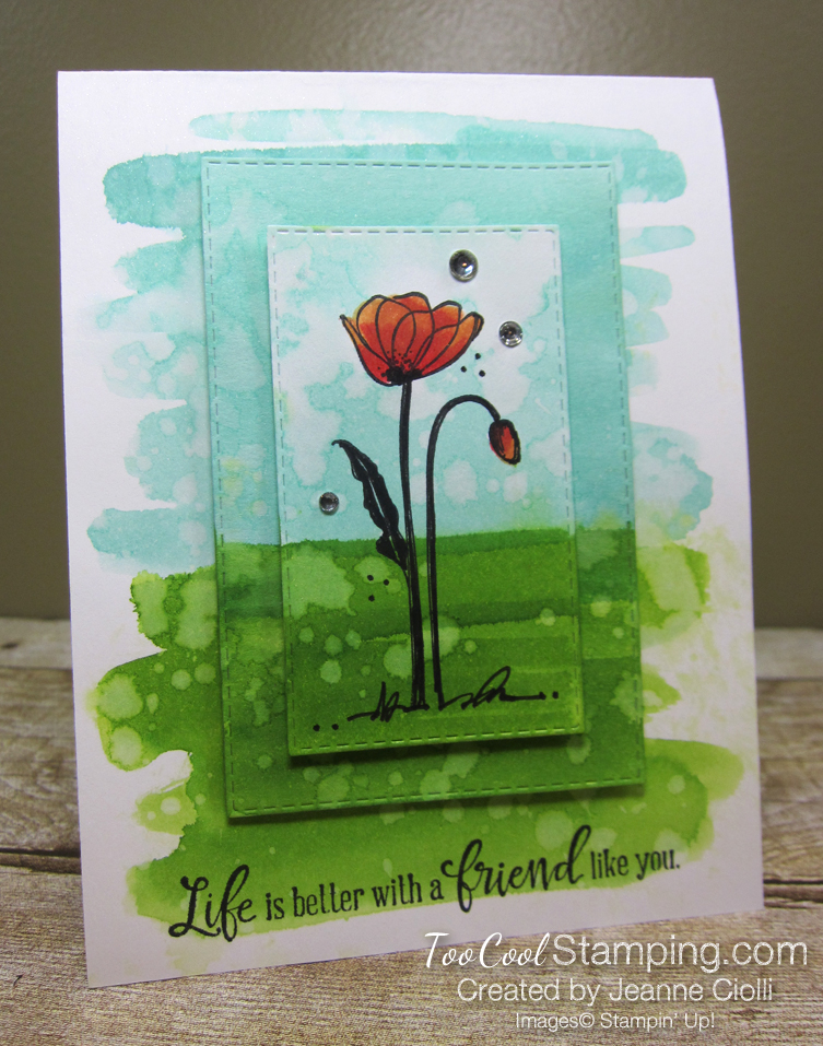 Painted poppies watercolor - ciolli 1