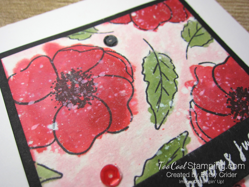 Painted poppies watercolor - crider 3