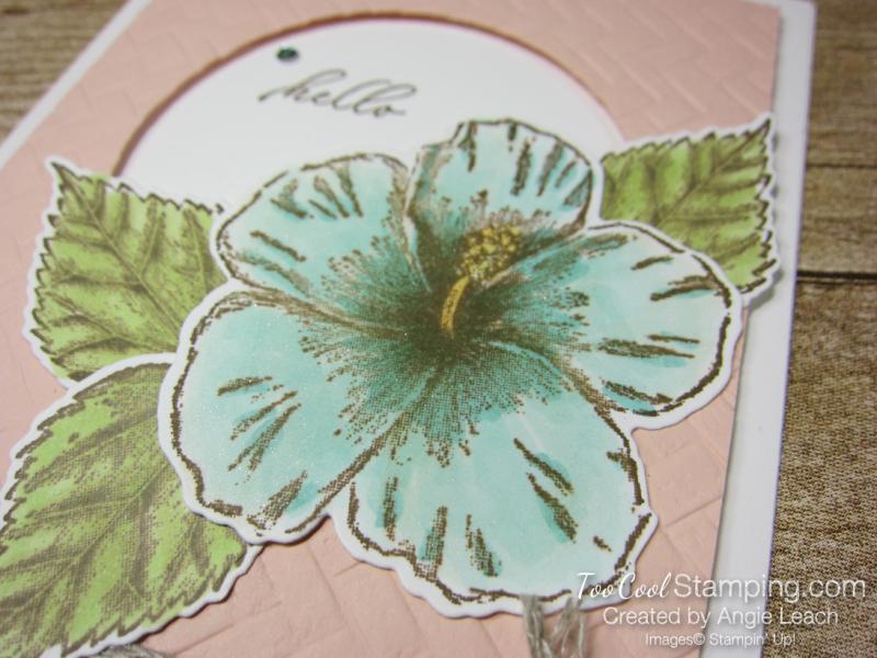 Timeless Tropical large bloom - petal 2