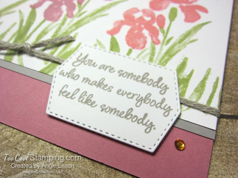 Inspiring Iris somebody - rose 3