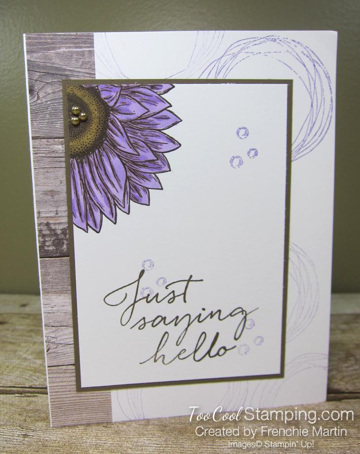 Celebrate sunflowers saying hello - martin 1