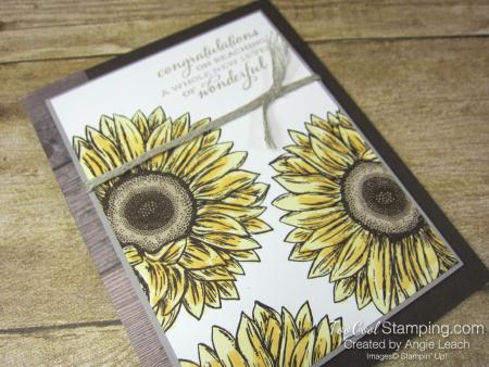 Celebrate Sunflowers New Level of Wonderful - yellow 2