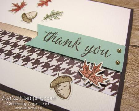 Beautiful autumn falling leaves - thank you 3