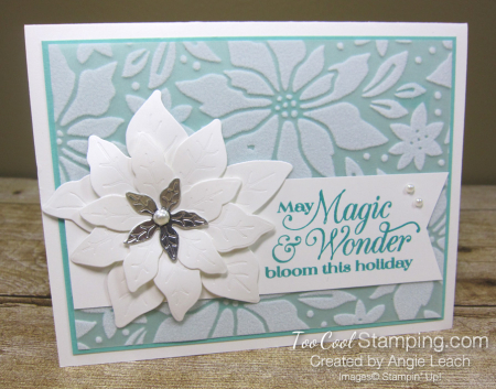 Pretty Poinsettia Plush Overlay cards - coastal 1