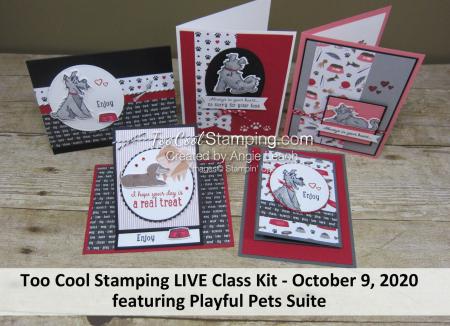 Playful Pets LIVE Class Banner
