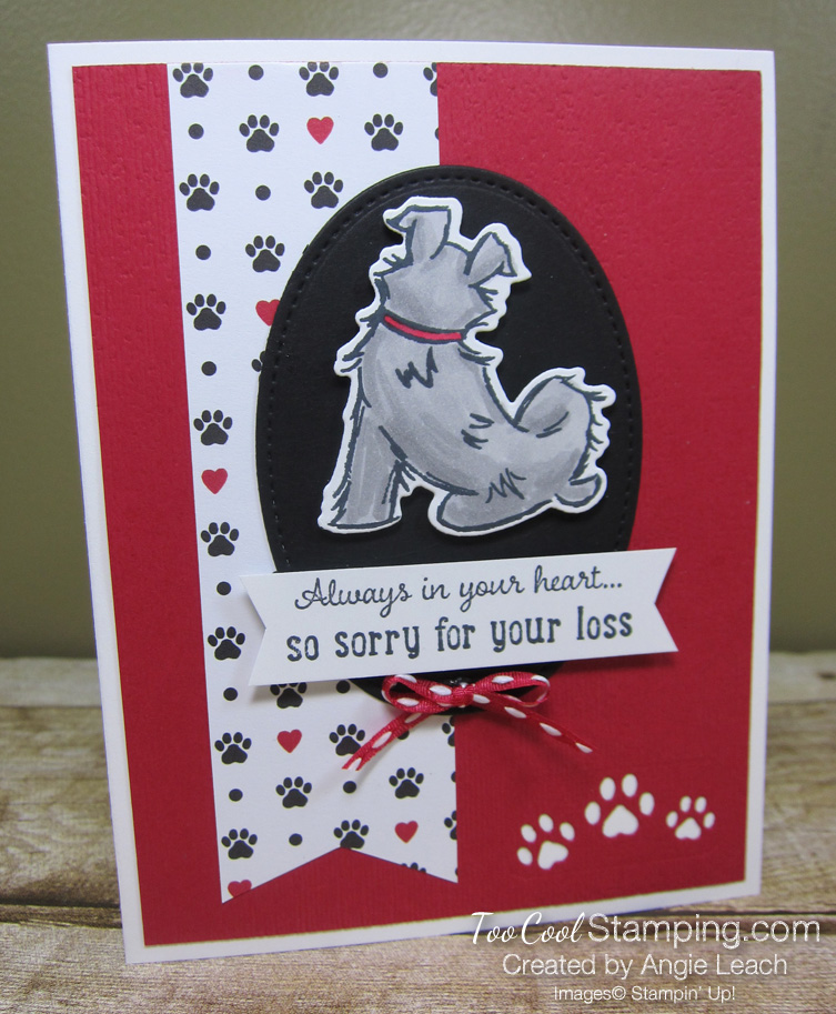Playful pets sorry for your loss - dog 1