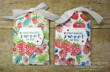 Delightful tag topper pouch - berry two cool