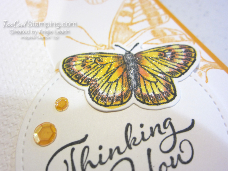 Butterfly Brilliance Thinking of You 3