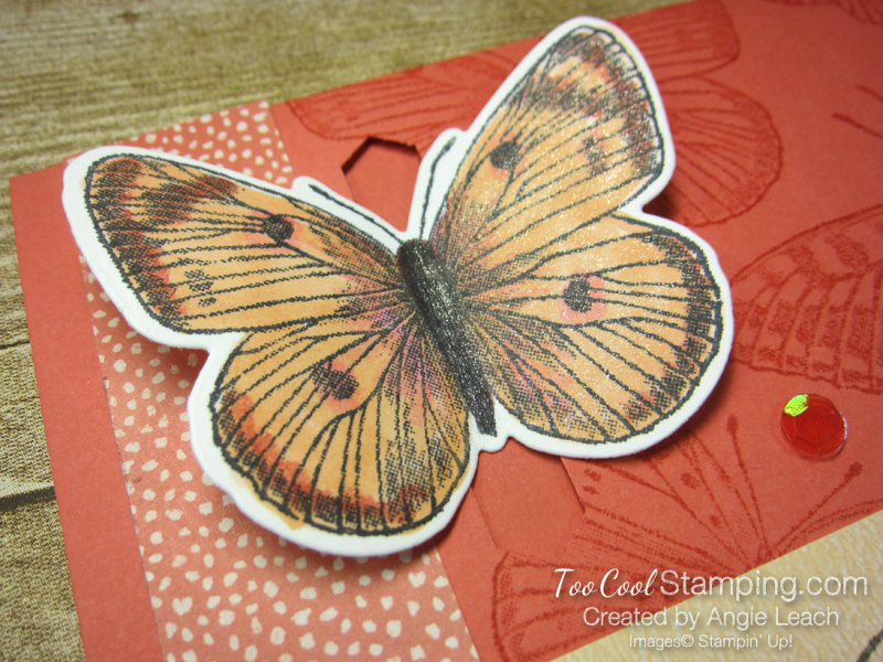 Butterfly Brilliance Emerging Butterfly Cards - coral 2