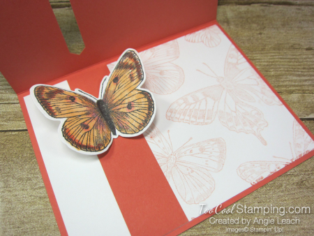 Butterfly Brilliance Emerging Butterfly Cards - coral 4